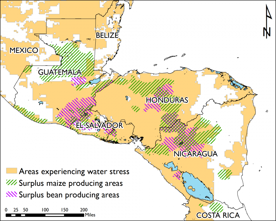 Figure 1.  Primera season production areas affected by water stress*