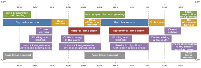 Land preparation and planting is from March to mid-May and September to mid-November. Deyr rainy season is from October to January. Gu rainy season is from April to July. Gu harvest is from July to August. Gu off-season harvest is from September to October. Deyr harvest is from January to February. Deyr off-season harvest is from March to April. Camel calving is from July to August and December to January. Cattle calving in the south is from July to mid-August and mid-January to March. Kiddling and lambing is from mid-November to January and mid-April to June. Livestock migration to dry season grazing areas is from mid-August to mid-October and mid-January to April. Livestock migration to wet season grazing areas is from November to January and mid-April to July. Peak labor demand is from September to mid-November and March to mid-May.