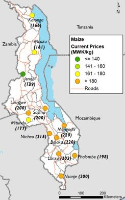 This is a map showing that prices in southern Malawi markets were highest, at over 180 MWK/kg. Prices in northern and central markets were mostly 161 to over 180 MWK/kg with Jenda market prices lower than 140 MWK/kg.