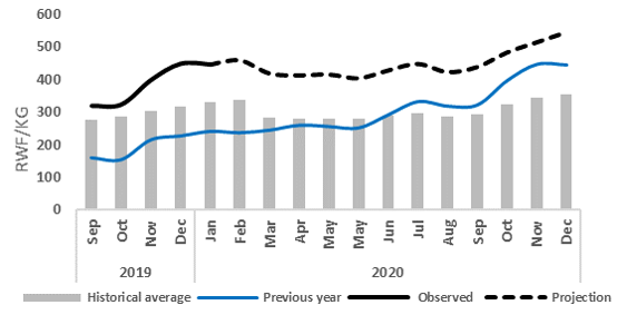 Graph of wholesale maize prices in Kigali, September 2019 - January 2020 (observed) and February - December 2020 (projected). Maize prices are currently above-average. Prices are expected to follow seasonal trends, decreasing slightly through May 2020 and then increasing throughout the rest of 2020. Prices are expected to remain significantly above average during this time.