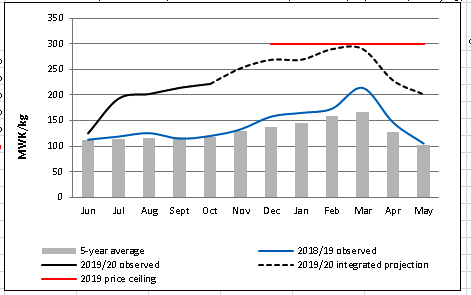 This is a graph showing observed prices (June to October 2019) and projected prices (November 2019 to May 2020), compared to average levels. Prices are well above average and are expected to peak in March 2020.