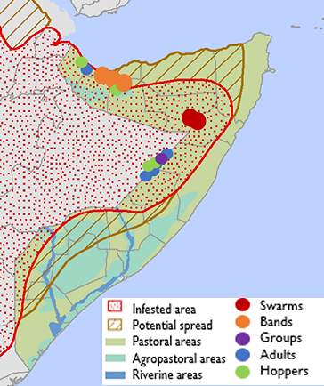 Map of Somalia, depicting the current locust-infested area in February and the potential spread of locusts from March to June 2020