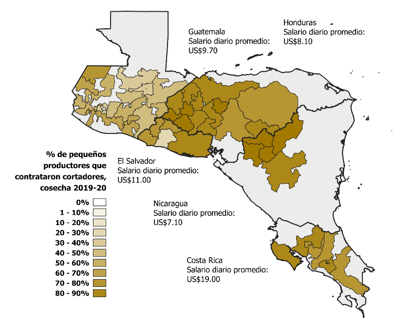 May of Central America region showing the need for labor hired by small-scale coffee producers. It is in Honduras, Costa Rica and northwestern Nicaragua where the largest number of small producers hire day laborers (more than 50%), then in Honduras (less than 50%)