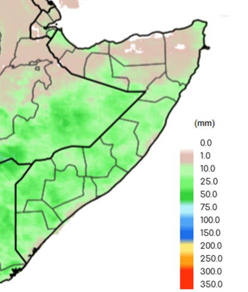 Map of Somalia depicting estimated rainfall in millimeters. Cumulative precipitation ranged from 10 to 75 millimeters (mm) in most south-central areas and in localized pockets in the North, while the rest of the country received less than 10 mm