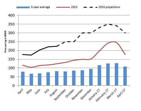 Figure 2. National maize grain price trends and projections (MWK/kg).