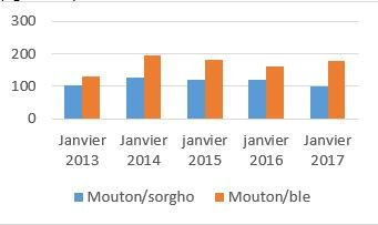 Figure 2. Trends in terms of trade for sheep/sorghum and sheep/wheat on the Magta Lahjar market (kg/animal)