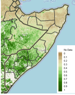 Map of Somalia. According to the satellite-derived eMODIS Normalized Difference Vegetation Index (NDVI) for the November 21-31 period, vegetation conditions are enhanced in southern and south-central Somalia, normal to above-normal in northwestern Somalia, and below normal in northeastern Somalia .