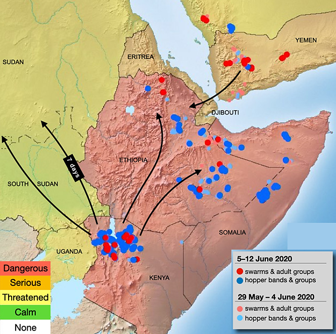 Map of East Africa and Yemen showing desert locust location and movement in early June