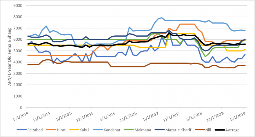 Graph illustrating sheep prices in AFN/KG from May 2014 to May 2019.