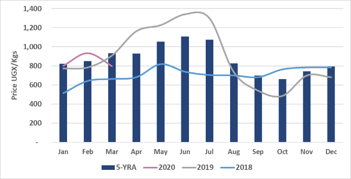 This is a graph showing that sorghum prices typically decrease seasonally between June and October, before increasing again through the following June, based on the five-year average. Prices were more stable relative to seasonal trends in 2018, and experienced sharper increases and decreases relative to the five-year average in 2019. In 2020, prices increased between January and February, but declined in March.