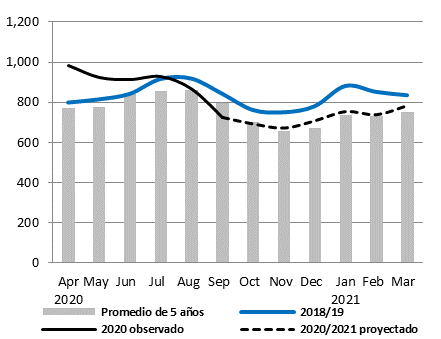 The projected price of white maize is expected to remain around the average until at least March