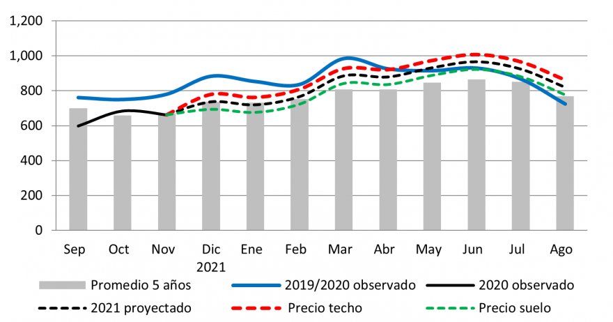 The price of white maize in Honduras follows a seasonal trend above the average