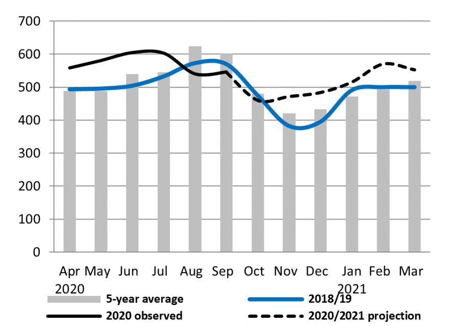 The price of maize in Nicaragua would remain slightly above average