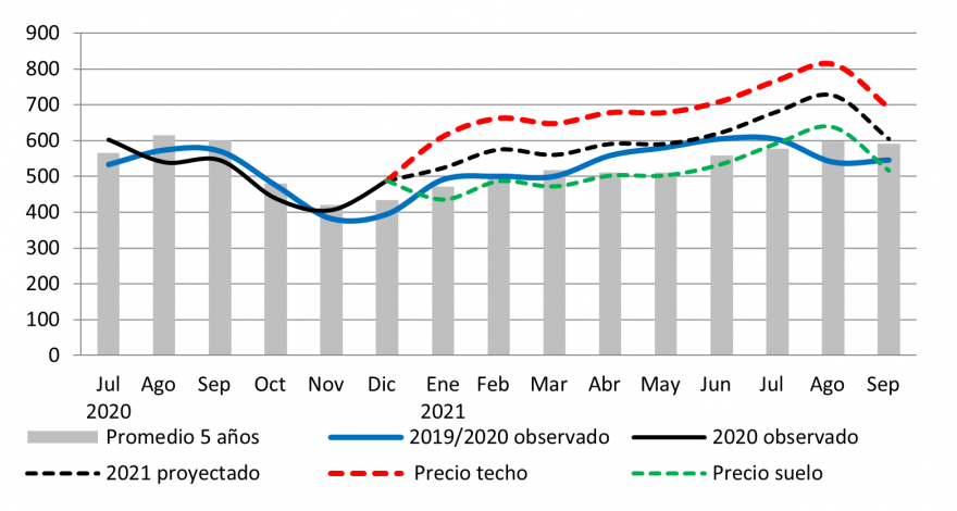 Prices of white maize in Nicaragua follow seasonal trends but remain above average