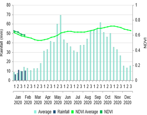 precipitation is close to average and NDVI is slightly above average in early 2020