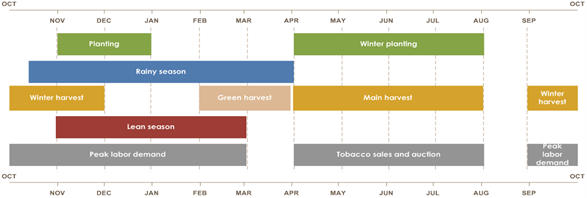 Rainy season is from mid-October until April. Planting is from November until January. Winter planting is from April to August. Green harvest is from February to April. Main harvest is from April until August. Winter harvest is from September until December. Lean season is from November until March. Peak labor demand is from September until March. Tobacco sales and auction is from April until August.