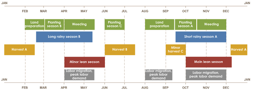 Calendar of agricultural activities in a typical year