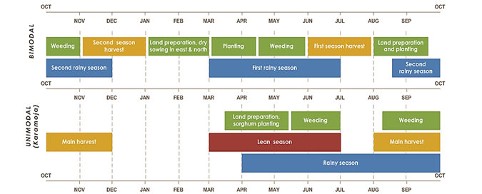 Uganda seasonal calendar. In bimodal, land preparation, dry sowing in the east and north are from January to march. Planting is from March to mid-April. Weeding is from mid-April to June and October to November. Land preparation and planting is from August to mid-September. First season harvest is from June to August. Second season harvest is from November to January. First rainy season is from March to July. Second rainy season is from mid-August to December. In Unimodal (Karamoja), land preparation, sorghum planting is from mid-March to mid-May. Weeding is from mid-May to July and early August to October. Main harvest is from August to December. Lean season is from March to July. Rainy season is from April to October.