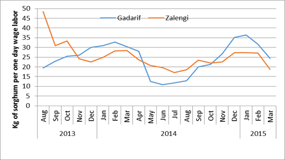 Figure 2: Daily wage labor to sorghum terms of trade in Gadaref and Zalingi markets, July 2013 to March 2015