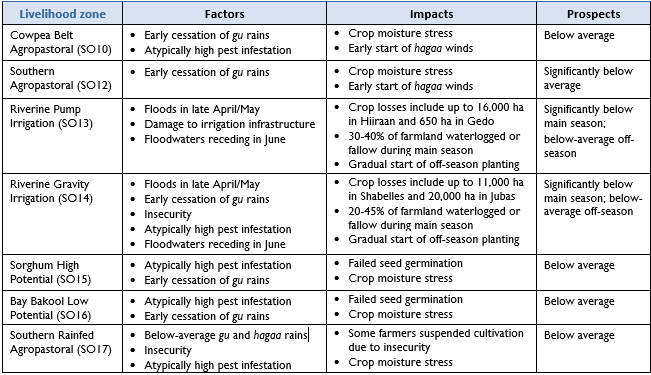 Table describing drivers and impacts on gu crop production prospects in each agropastoral and riverine livelihood zone in south-central Somalia