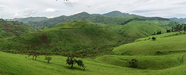Photo of agricultural area in Democratic Republic of Congo