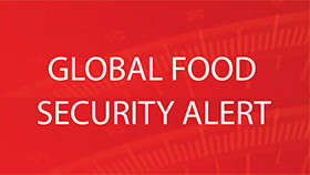 Links to the latest Global Food Security Alert related to the COVID-19 pandemic