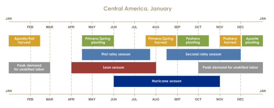 The Apante season runs from December to January. The high labor demand goes from October to February. The lean season from April to July. The first rainy period from April to July. The Primera season from April to August. The second rainy period from Augu