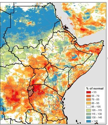 Kiremt cumulative rainfall from the start of the season through August 10 was average to above average across most areas.