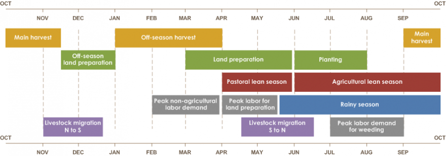 The main harvest is from September to mid-November. The off-season harvest is from January to April. Off-season land preparation runs from mid-November to January. Soil preparation goes from March to June.