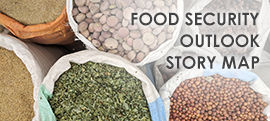 Food security outlook story map