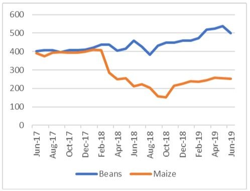 Graph showing beans and maize prices in Kigali over time in Rwf/kg