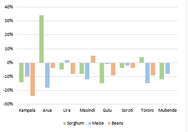 Chart shows price of maize, beans and sorghum in eight markets compared to five-year average. Prices are around 10 percent below average across markets, except for sorghum in Arua and Tororo, maize in Lira, and beans in Masindi, which are above average
