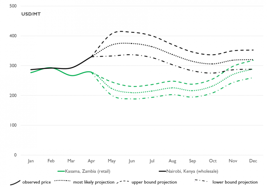 Figure 2. White maize prices and projections in East and Southern Africa