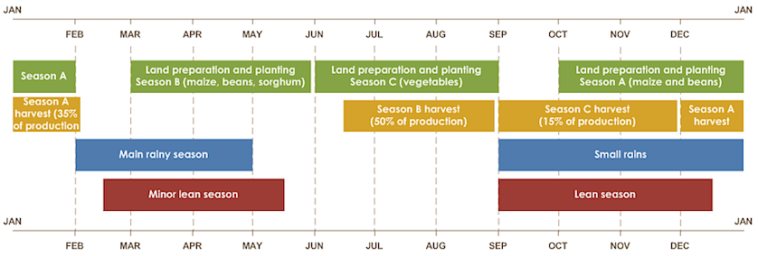 Season A planting and harvest: Oct to Jan; Dec to Jan. Season B planting and harvest: March to May; June to Aug. Season C planting and harvest: June to Aug; Sept to Nov. Rains: Sep to Dec and Feb to April. Lean season: Sept to Dec.