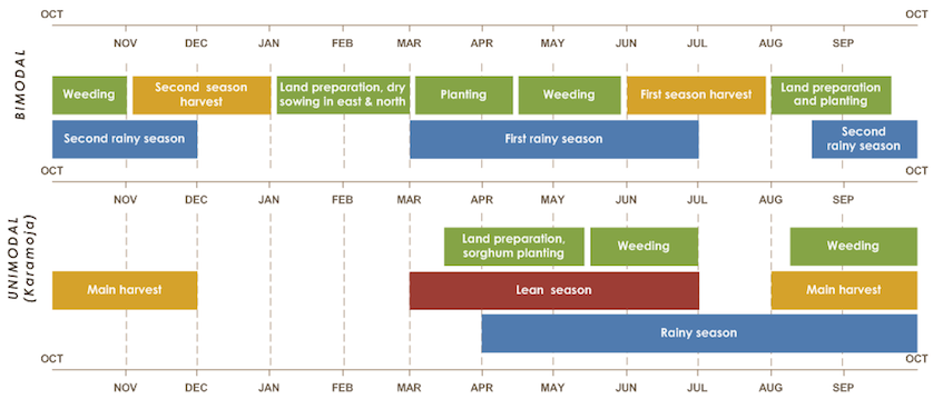 In bimodal, first season planting Mar to mid-April, harvest Jun and July. Second planting Aug and Sep, harvest Nov and Dec. Two rainy seasons Mar to Jul and mid-Aug to Dec. In unimodal, lean season Mar to Jul. Planting Mar to June, harvest Aug to Dec.