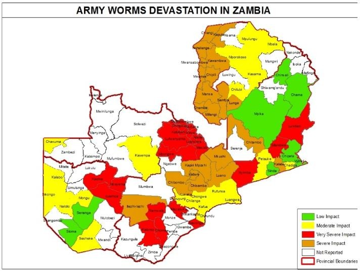 Figure 5. Armyworm affected areas as of early January.