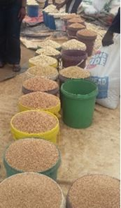 Figure 3. Small grains on sale, Checheche Growth Point, Chipinge District, mid-February 2017.