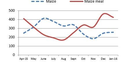 Figure 5. Informal maize and meal export volume to DRC (MT).