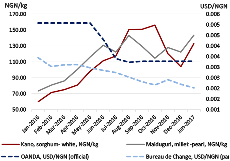 Figure 3. Kano Sorghum and Maiduguri Millet Prices and Exchange Rate (official and parallel)