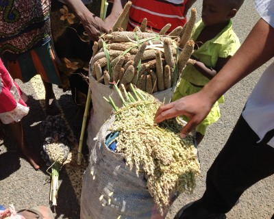 Bags of nutritional grain in an African market